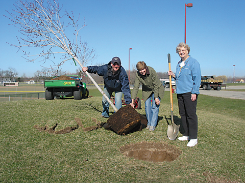A SHADY FUTURE—Nancy Hoovler and Judy Markee help a Shaner Avenue Nursery staffer plant one of three