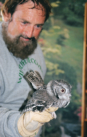 UP CLOSE AND PERSONAL—Joe Rogers shows off an owl at Wild Birds Unlimited, 5426 Northland. He will have about ten live wild birds for a