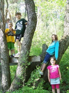 Summerfest-kids-in-tree