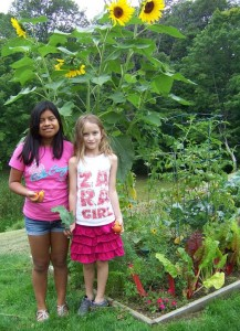 Sisters Maria  and Zara McFarland under the sunflower, with tomatoes and kale.