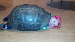 Zoo-melinda's-pics-of-kid-in-turtle-shell