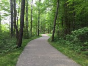 Cannon Township Trail
